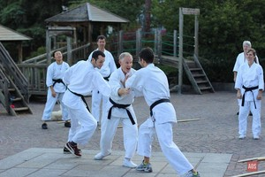 Aikido Alive London